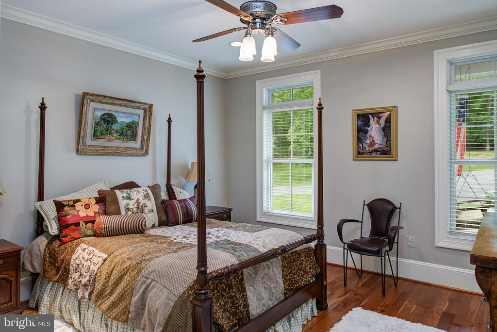 The main level guest bedroom - 41430 FOX CREEK LN, LEESBURG
