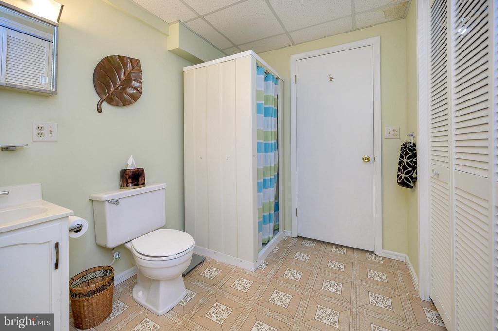 Lower level full bathroom - 508 GLENEAGLE DR, FREDERICKSBURG