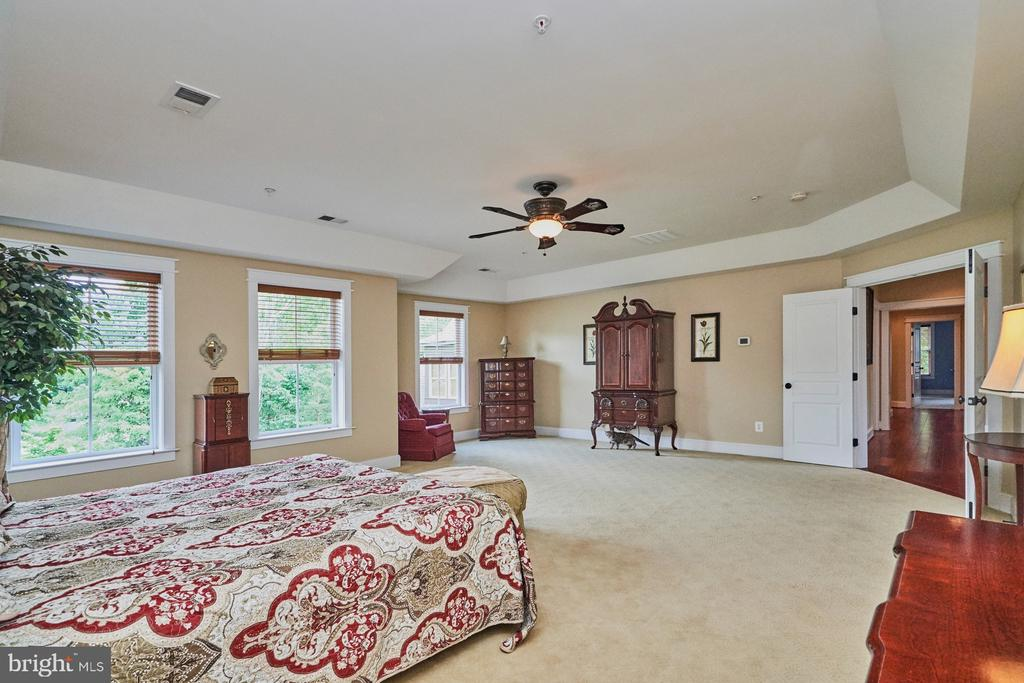 Sweeping Views of Rear Yard & Trey Ceiling - 14428 EAGLE ISLAND CT, GAINESVILLE