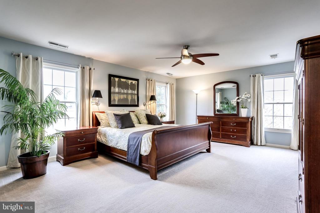 Expansive Master bedroom - 11016 DORSCH FARM RD, ELLICOTT CITY
