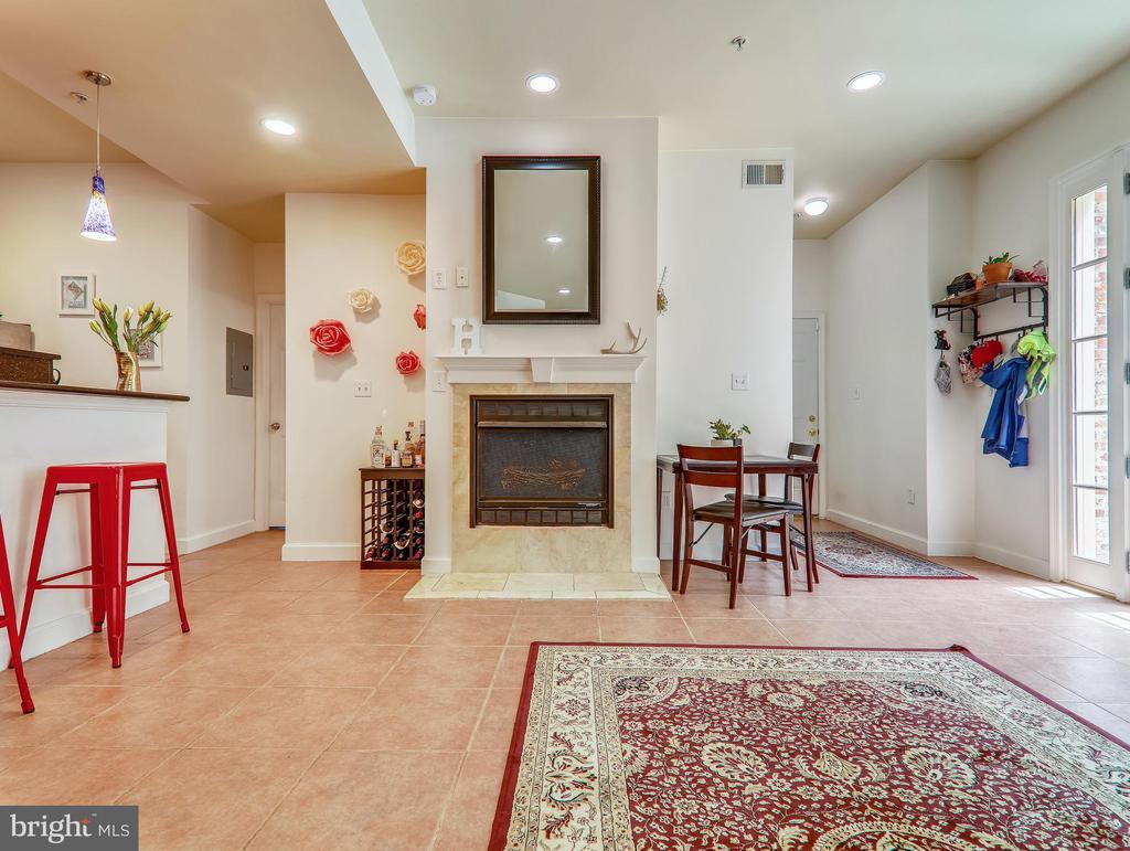 Gas fireplace - 3350 17TH ST NW #T2, WASHINGTON
