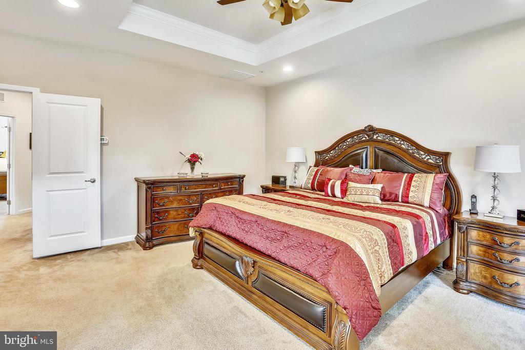 Master Bedroom - 22362 BRIGHT SKY DR, CLARKSBURG