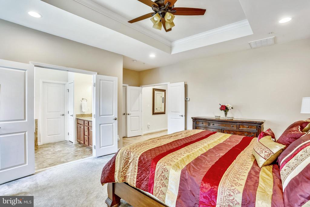 Master Bedroom with private bathroom - 22362 BRIGHT SKY DR, CLARKSBURG