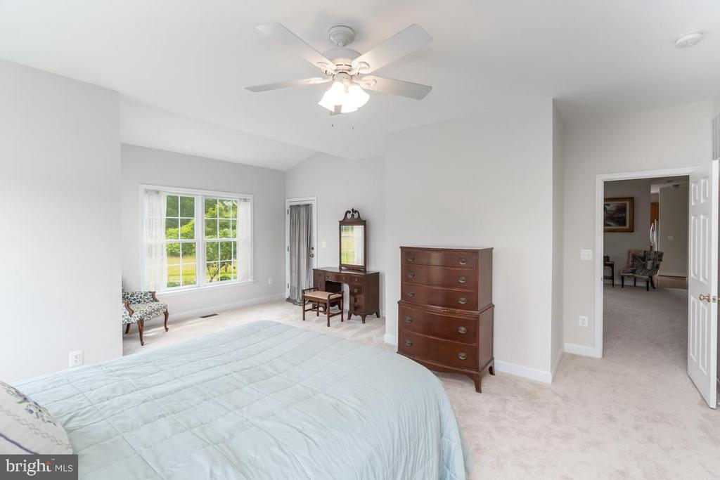 Master bedroom on the main level - 160 WILLOWDALE LN, FREDERICKSBURG