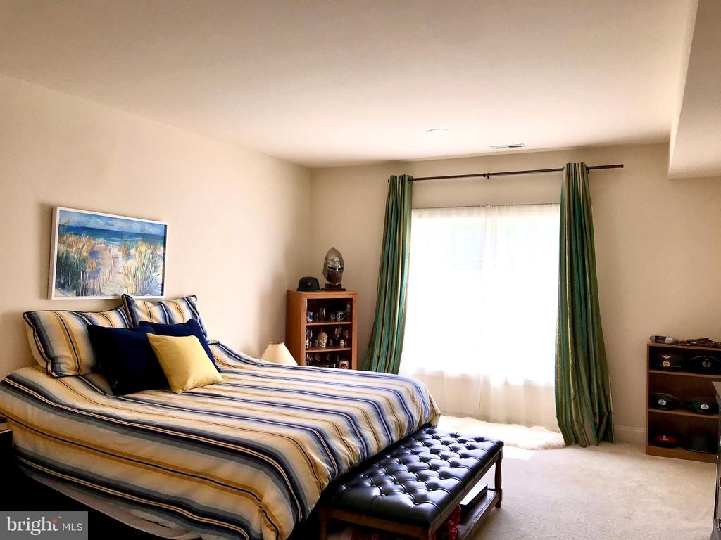 Bedroom in basement with double window - 14414 BROADWINGED DR, GAINESVILLE