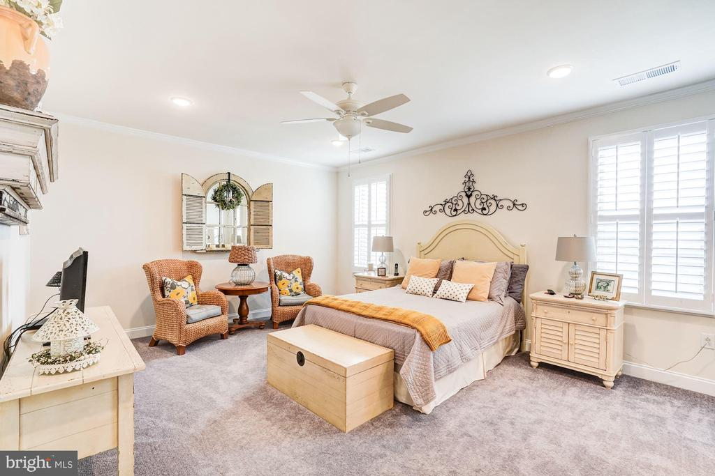 Master bedroom with ceiling fan - 23631 HAVELOCK WALK TER #420, ASHBURN