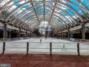 RTC Winter Ice Rink - 1308 PAVILION CLUB WAY, RESTON