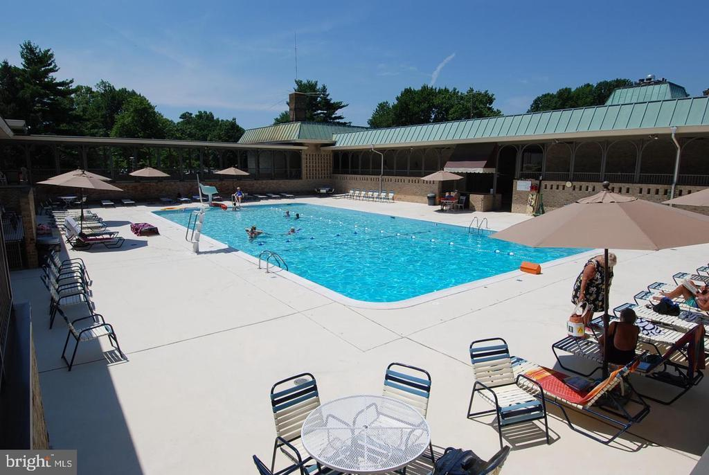 Outdoor Pool - 3429 N LEISURE WORLD BLVD N #88-3E, SILVER SPRING