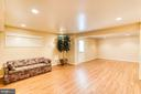 Rec Room, Walk Up Stairway to Backyard - 1308 PAVILION CLUB WAY, RESTON