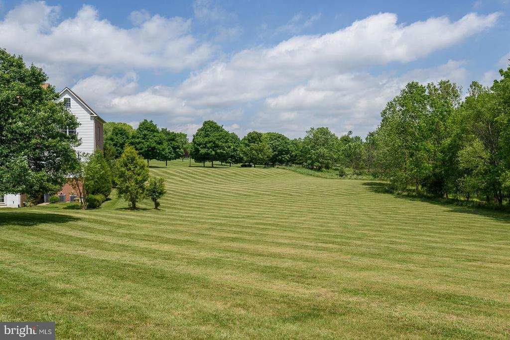 Peaceful and Private - 13701 MOUNT PROSPECT DR, ROCKVILLE