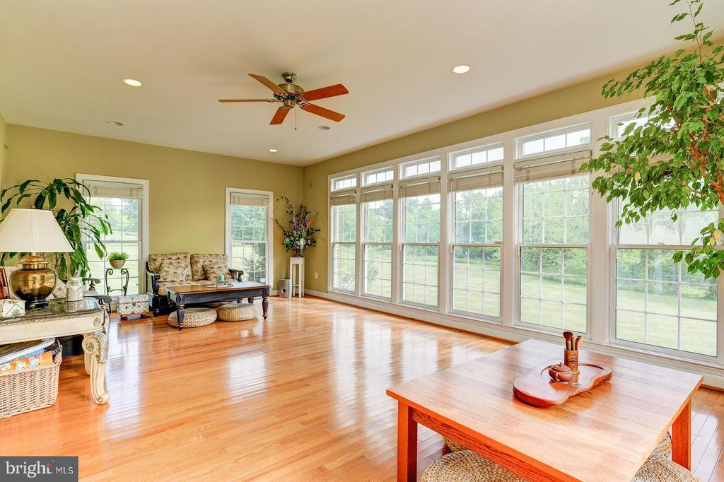 Floor to ceiling windows throughout the main level - 13701 MOUNT PROSPECT DR, ROCKVILLE
