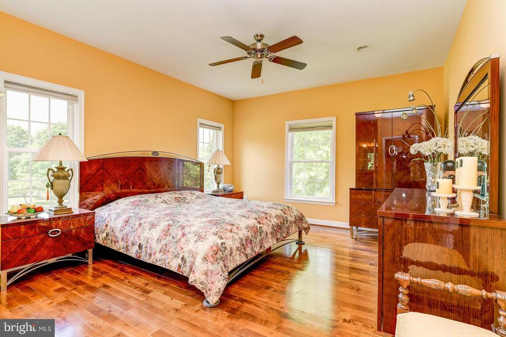 In-Law Suite Bedroom 1 with walk-in closet - 13701 MOUNT PROSPECT DR, ROCKVILLE