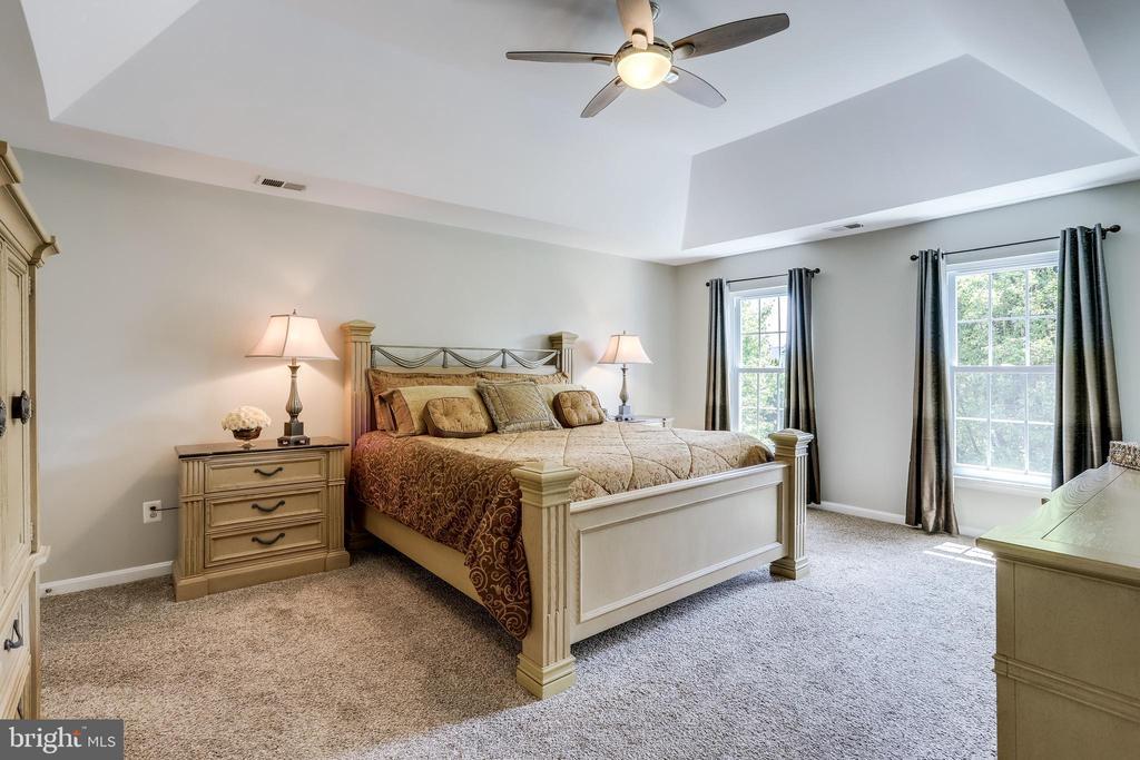 Master Bedroom - 43226 KATHLEEN ELIZABETH DR, ASHBURN