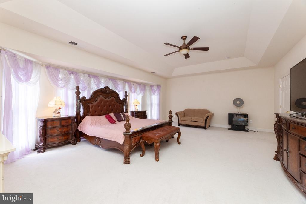 Tray ceiling and ceiling fan - 7901 S RUN VW, SPRINGFIELD