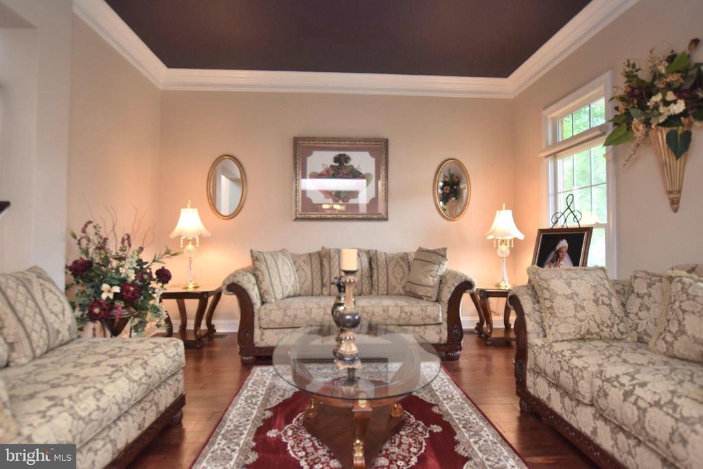 Living Room - 9287 SUMNER LAKE BLVD, MANASSAS