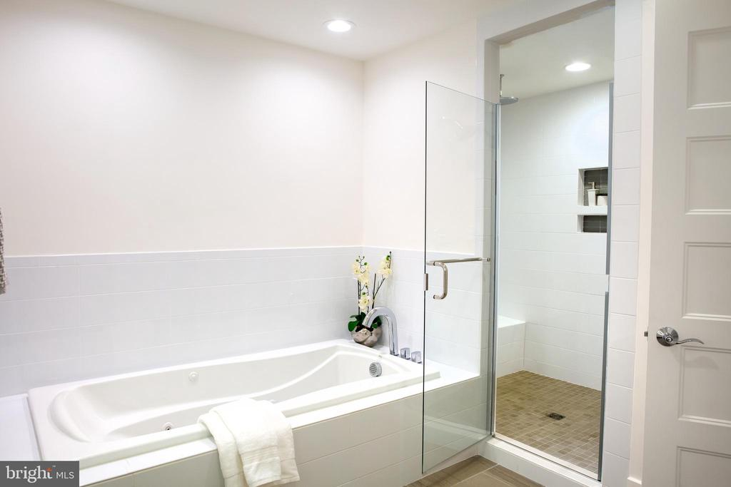 Master Bath North - 645 MARYLAND AVE NE #201, WASHINGTON