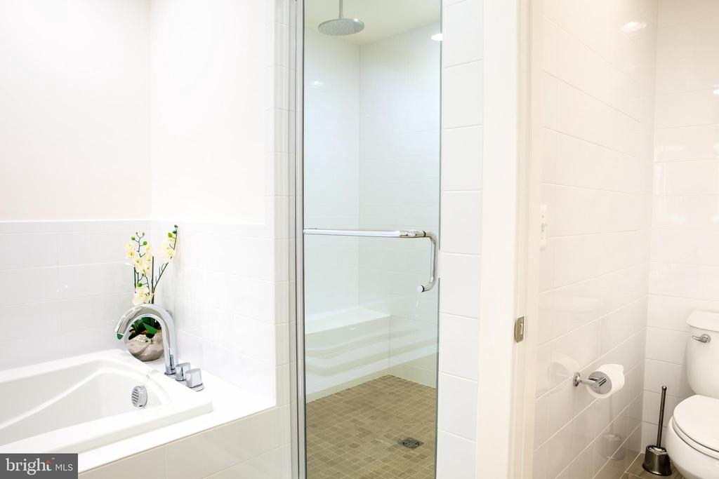 Master Bath Northeast - 645 MARYLAND AVE NE #201, WASHINGTON