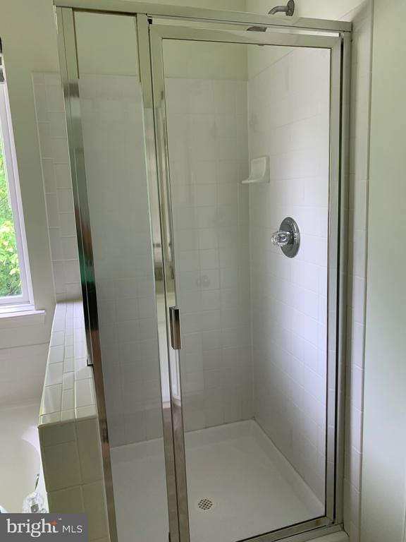 Separate shower... - 6587 KIERNAN CT, ALEXANDRIA