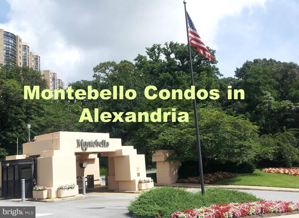 Gated community 2 lights from Old Town - 5902 MOUNT EAGLE DR #609, ALEXANDRIA