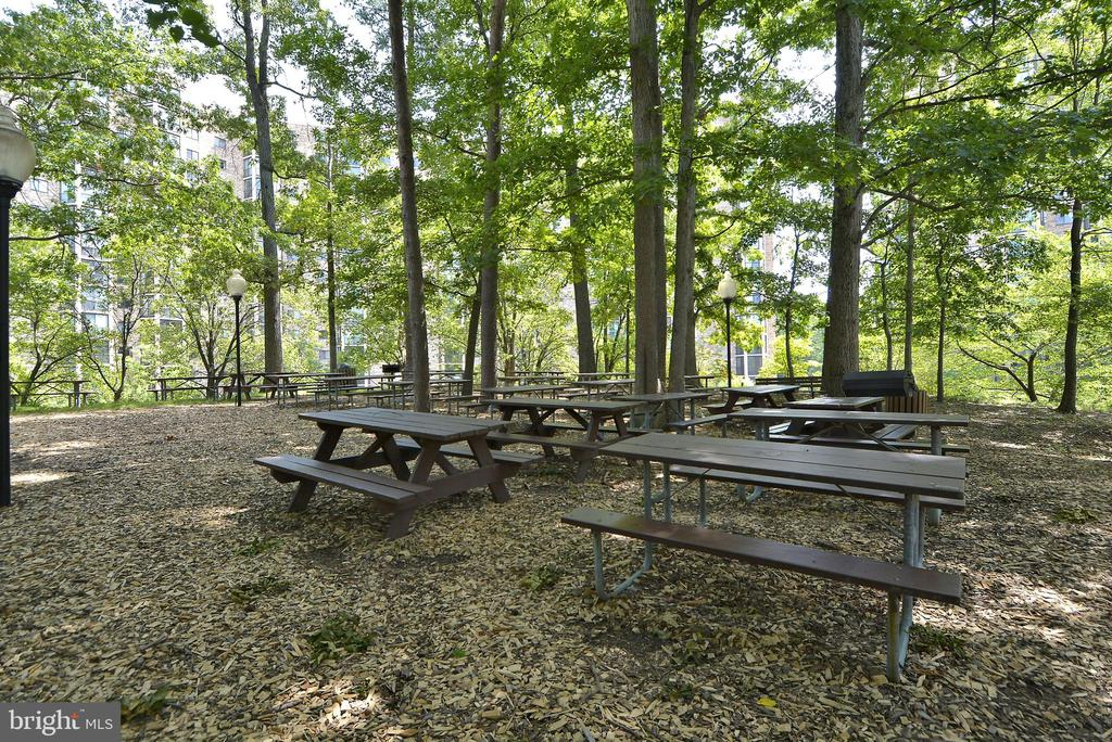 BBQ areas through-out our grounds - 5902 MOUNT EAGLE DR #609, ALEXANDRIA