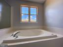 Master Bathroom soaking tub view-2 - 6311 WILLOWFIELD WAY, SPRINGFIELD