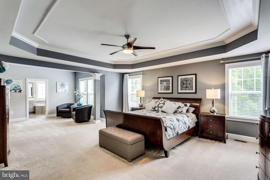 Tray Ceiling and Decorative Paint and Molding - 41684 WAKEHURST PL, LEESBURG