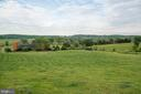 Nearly 300 acres - 8394 ELWAY LN, WARRENTON