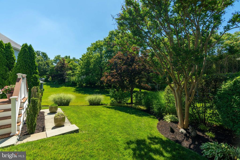 Backyard - 8523 SILVERVIEW DR, LORTON