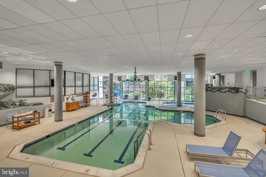 Indoor pool - 5903 MOUNT EAGLE DR #610, ALEXANDRIA
