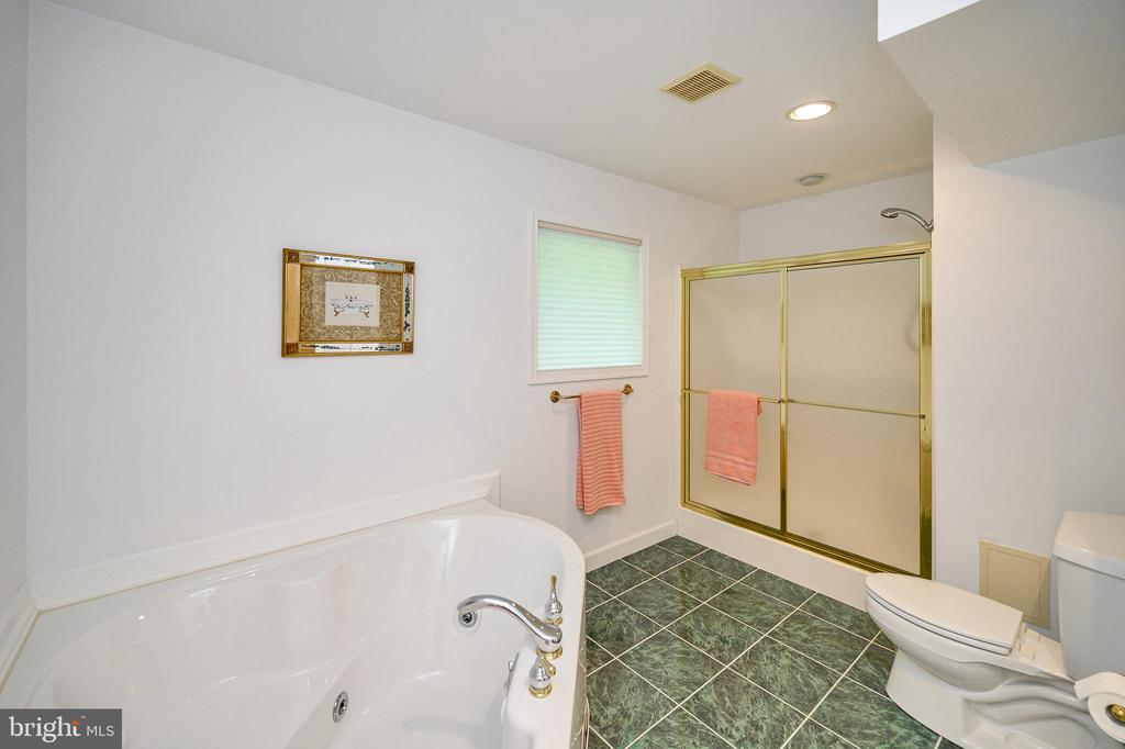 Master Separate Shower & Jetted Tub - 124 BIRCHSIDE CIR, LOCUST GROVE