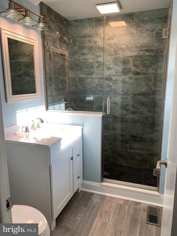 Brand new master bath with gorgeous new shower - 11504 HESSONG BRIDGE RD, THURMONT