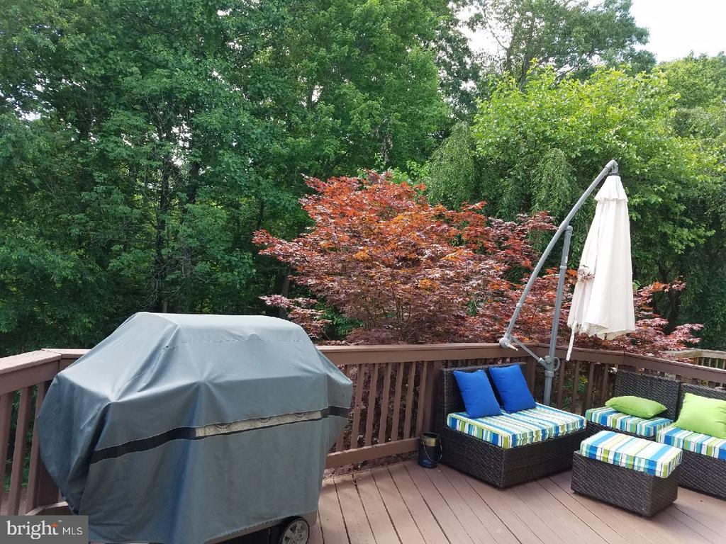 Deck with Private Nature View - 47597 COMER SQ, STERLING