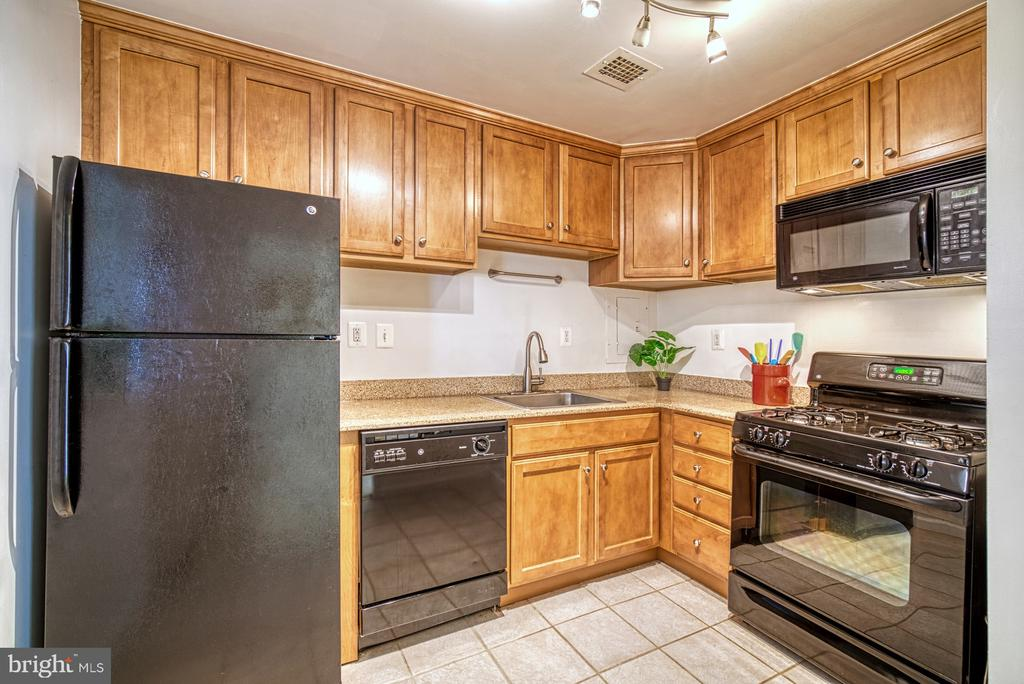 Upgraded kitchen w/ granite counters and cabinetry - 10570 MAIN ST #325, FAIRFAX