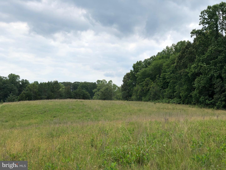 Terreno per Vendita alle ore Fork Union, Virginia 23055 Stati Uniti