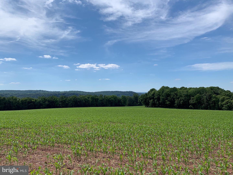 أراضي للـ Sale في Dalmatia, Pennsylvania 17017 United States