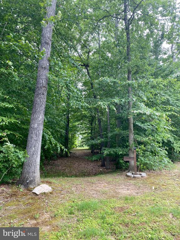 Nature walk through the wooded path - 3545 GROUSE POINTE DR, STAFFORD