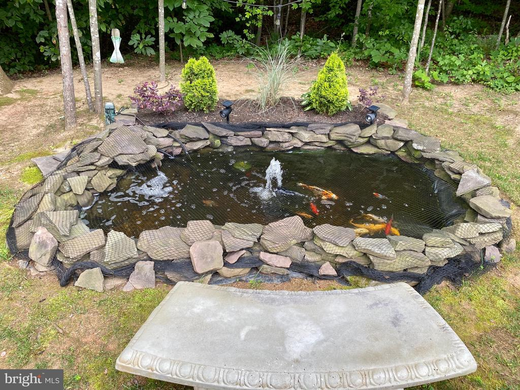 Coy Pond - 3545 GROUSE POINTE DR, STAFFORD