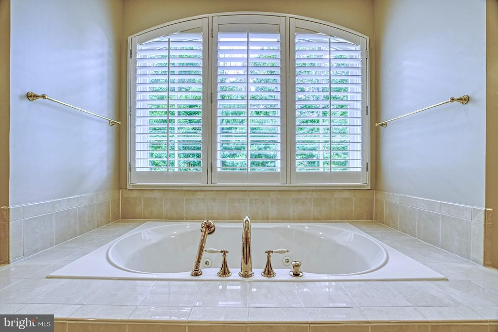 Master Bath - 41011 ALYSHEBA DR, LEESBURG