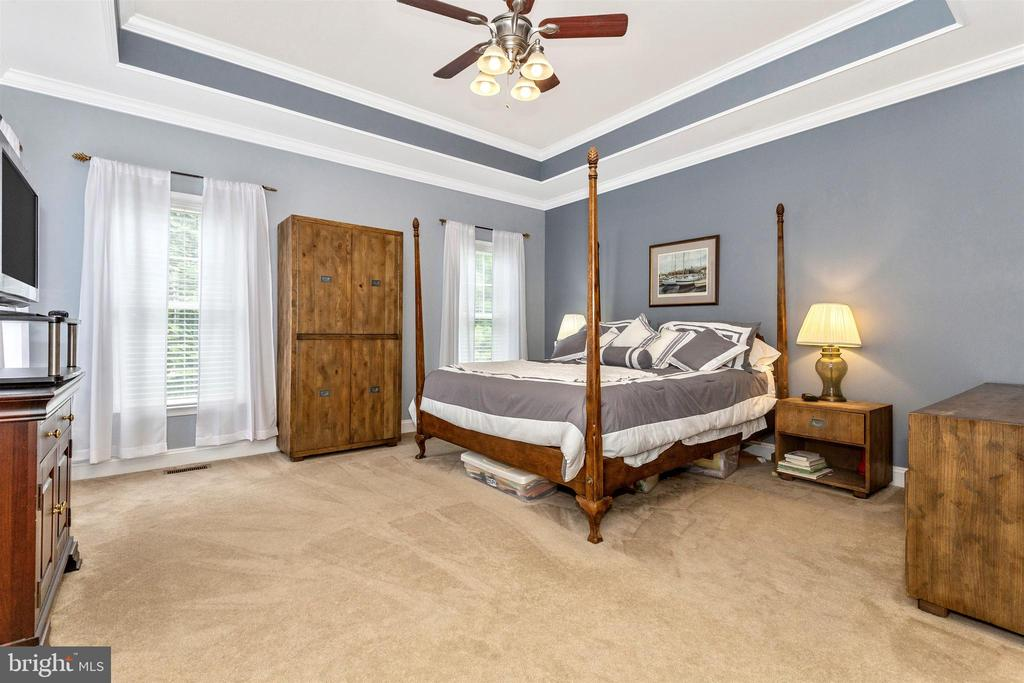 Main level master suite - trey ceilings. - 2689 MONOCACY FORD RD, FREDERICK