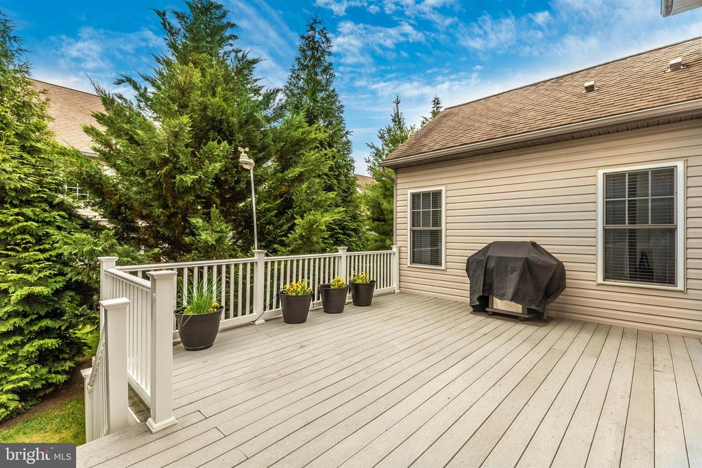 Natural gas line for grill - included! - 2689 MONOCACY FORD RD, FREDERICK