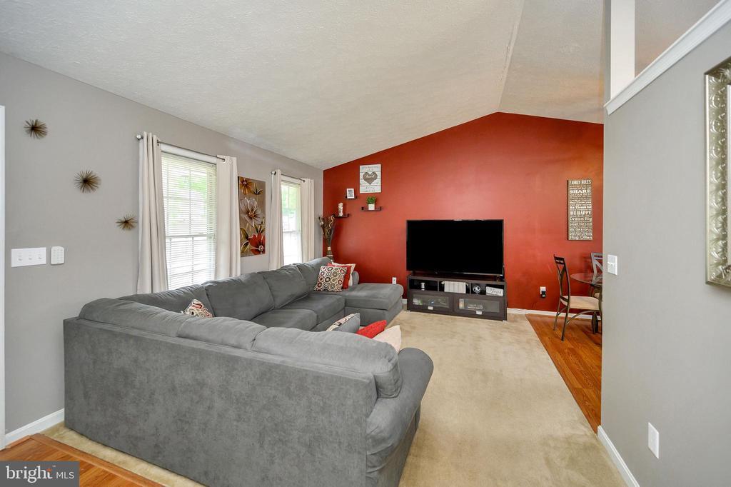 Family room - 10109 HERIOT ROW CT, FREDERICKSBURG