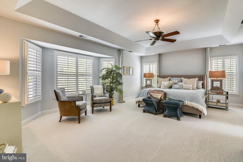 Master Bedroom & Setting Area - 18503 PELICANS NEST WAY, LEESBURG