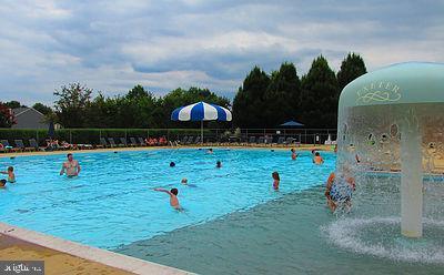 Community pool - 302 HEDGESTONE TER NE, LEESBURG