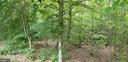Densely wooded lot ensures your privacy - 100 EMPRESS ALEXANDRA PL, FREDERICKSBURG