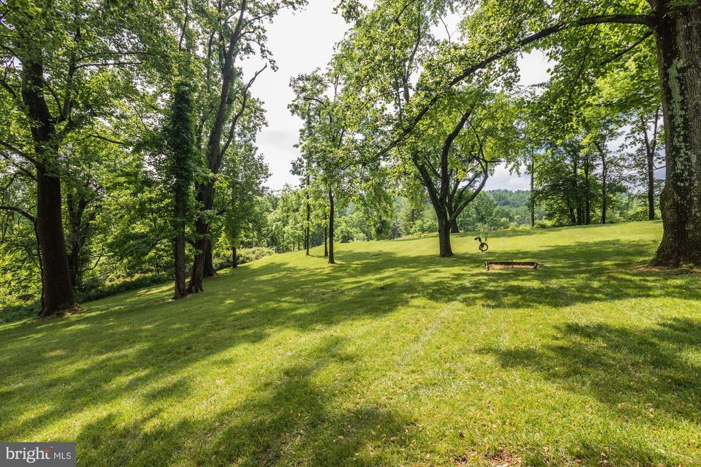 Grassy meadow - 16832 OLD WATERFORD RD, PAEONIAN SPRINGS