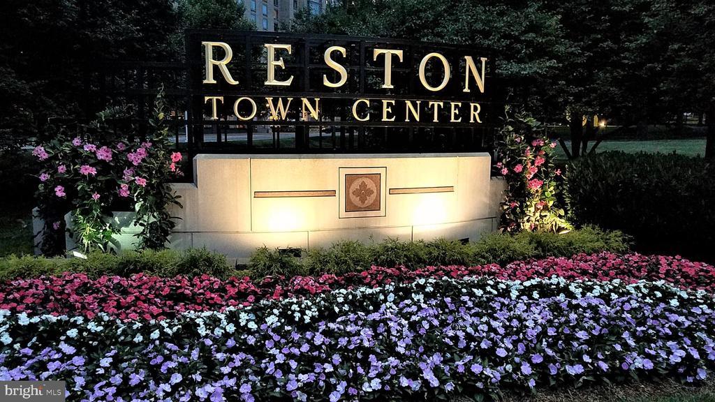 - 11541 HEMINGWAY DR, RESTON