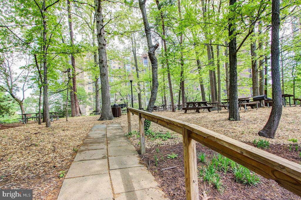 Walking and Nature Trails and Picnic Areas! - 5902 MOUNT EAGLE DR #1406, ALEXANDRIA