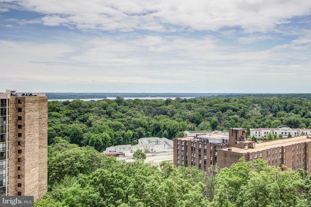 Potomac River Views All Day Long! - 5902 MOUNT EAGLE DR #1406, ALEXANDRIA
