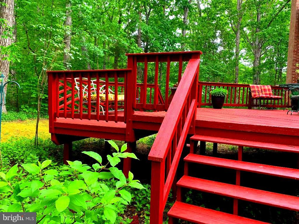 Back Deck - Enjoy! - 12210 GLADE DR, FREDERICKSBURG