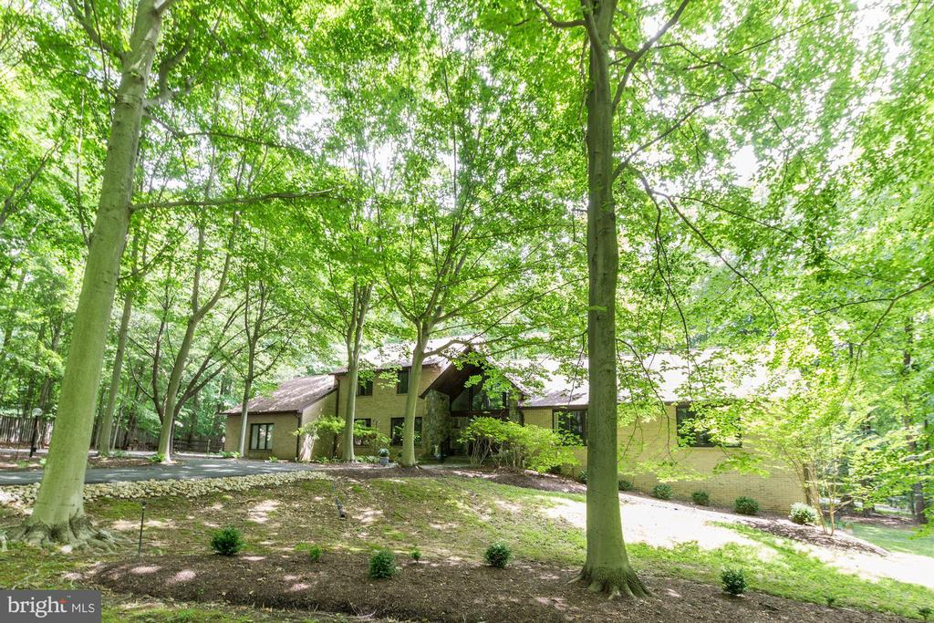 Exterior  - front lawn - 17007 BARN RIDGE DR, SILVER SPRING